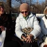 Drepturile omului la români - o campanie de informare APADOR-CH