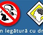 APADOR-CH nu e implicată în proiectul municipiului Baia Mare